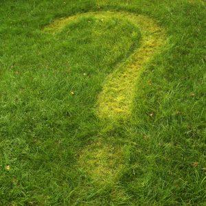 Fragezeichen im Rasen